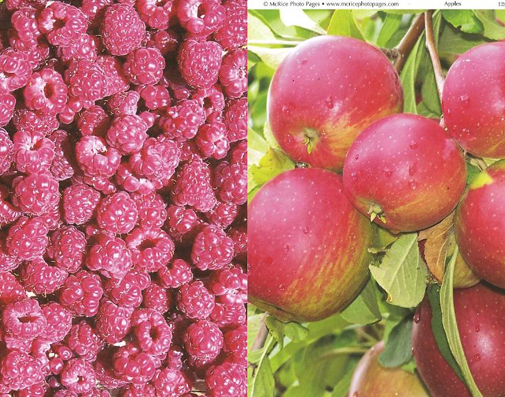 McRice Raspberries and apples